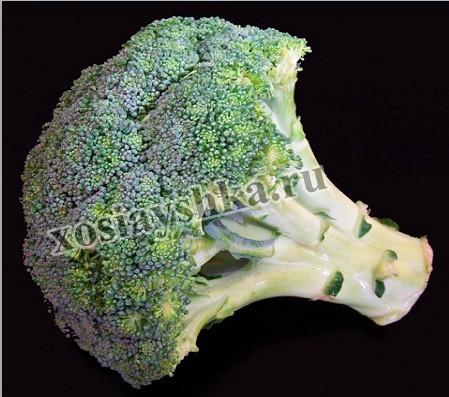 Происхождение брокколи - острова средиземноморья. Представляет собой однолетнее растение с цилиндрическим стеблем, который достигает в длину 70 см.