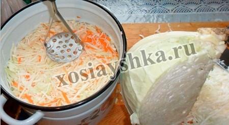 Перемешиваем капусту и морковь, зальем рассолом и оставляем на два дня в теплом помещении ( в квартире, дома).