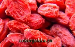 Ягоды годжи или дерезы обыкновенной (Кликните по картинке)