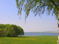 Отдых на природе весной