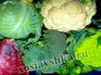 Многообразие видов капусты